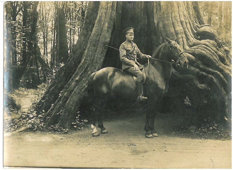 [Mounted soldier] c.1914-1918. Image from the CCGW archives.