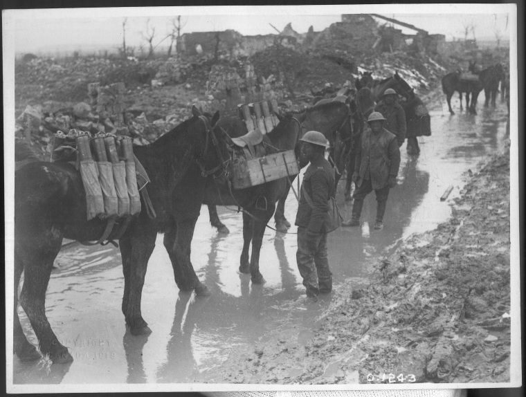 Pack horses taking up ammunition to the guns of 20th Bty CFA, Neuville-Saint-Vaast, APril 1917. [LAC official title] Seton Collection, CCGW/CCGG 2015.10.13.01