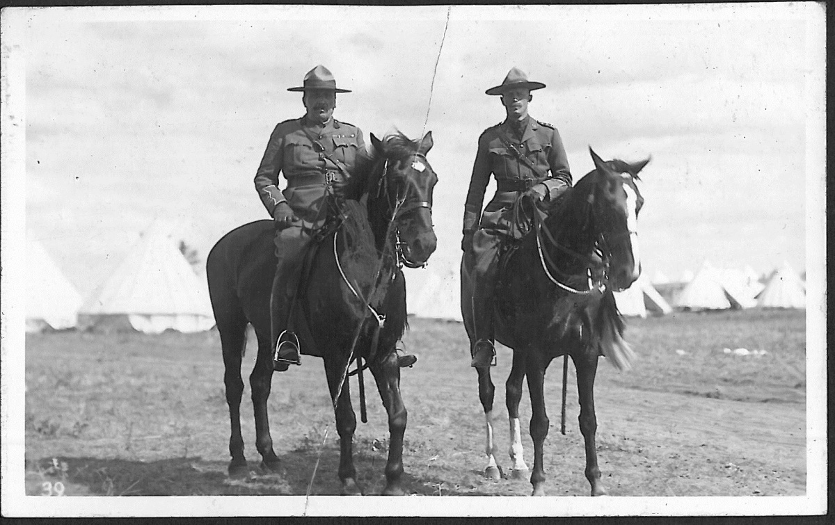 The Old Lion Sam Steele And The Canadian Expeditionary Force